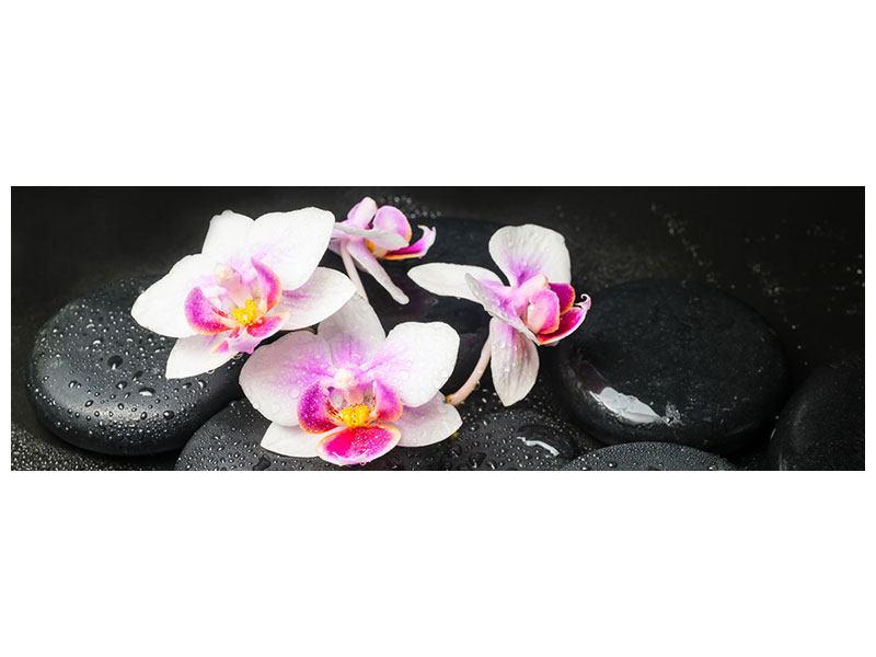 Metallic-Bild Panorama Feng-Shui-Orchidee Zen