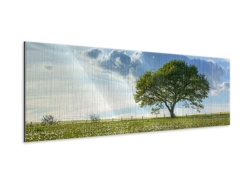 Metallic-Bild Panorama Frühlingsbaum