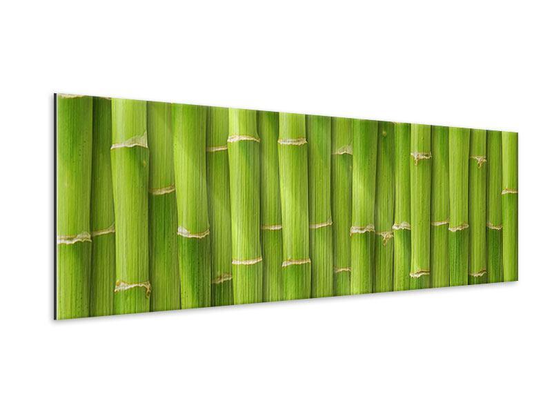 Metallic-Bild Panorama Bambuswand