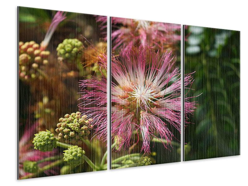 Metallic-Bild 3-teilig Die Regenbaumblüte