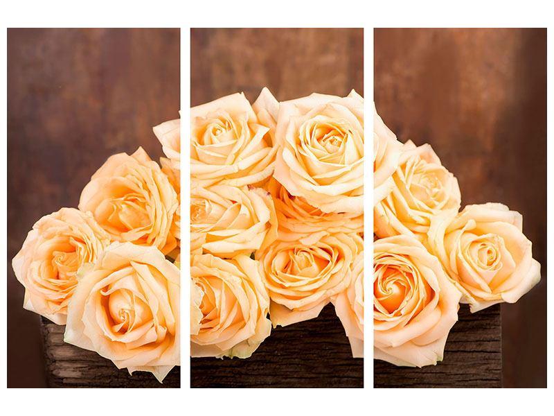 Metallic-Bild 3-teilig Die Rosenzeit