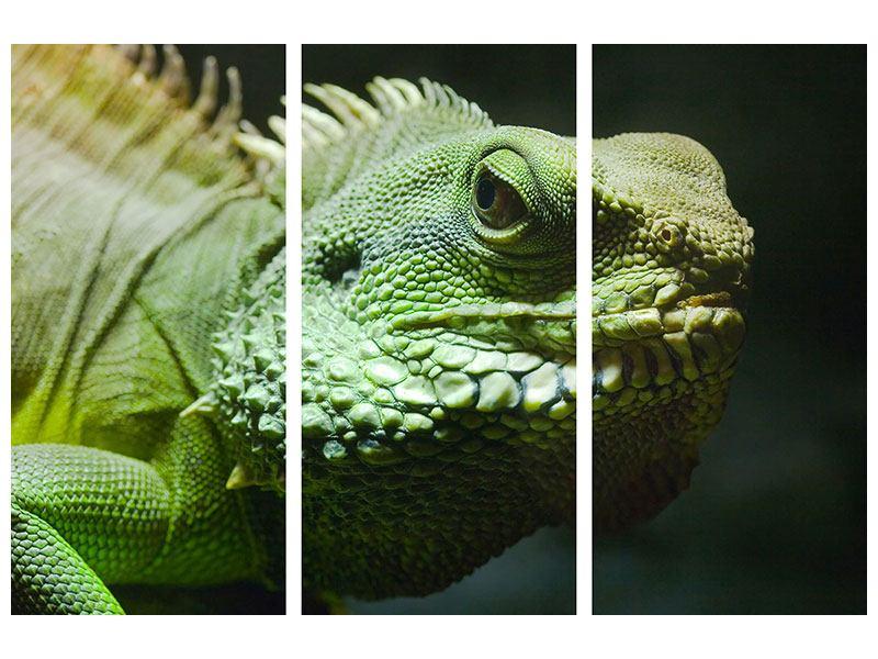 Metallic-Bild 3-teilig XXL Leguan