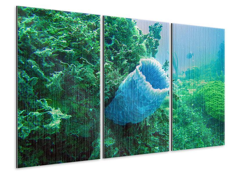 Metallic-Bild 3-teilig Korallen