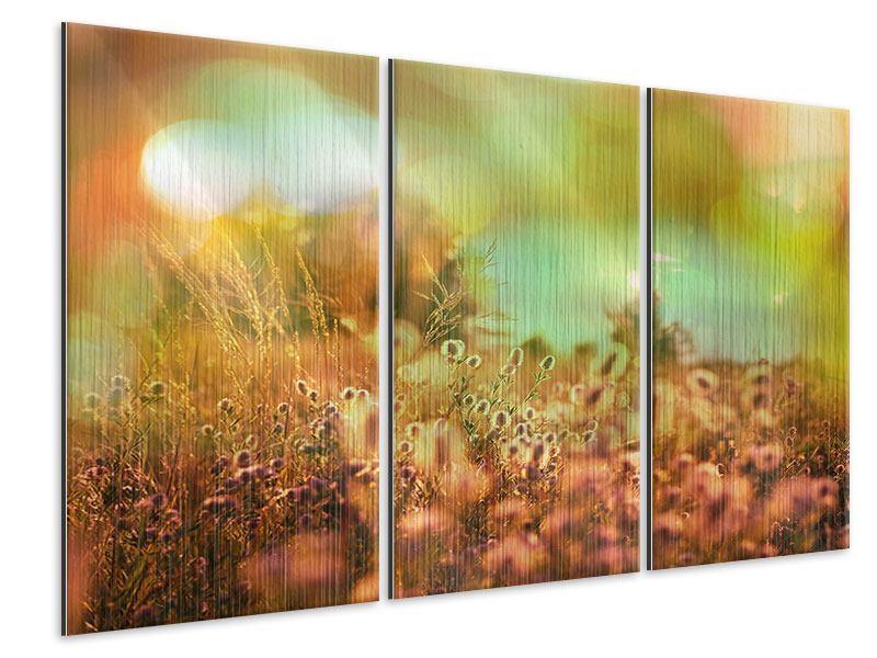 Metallic-Bild 3-teilig Blumenwiese in der Abenddämmerung