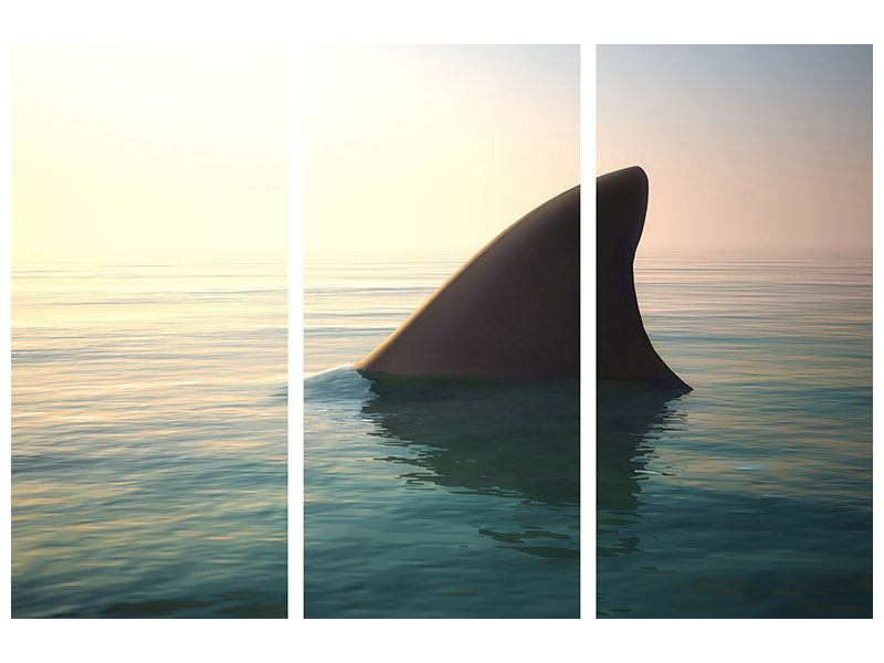 Metallic-Bild 3-teilig Haifischflosse