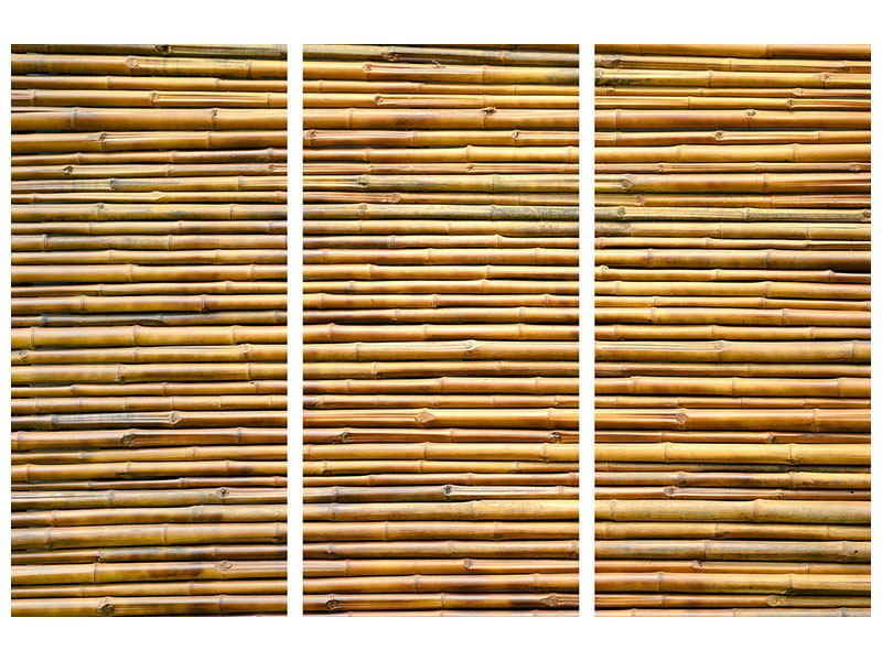 Metallic-Bild 3-teilig Bambus
