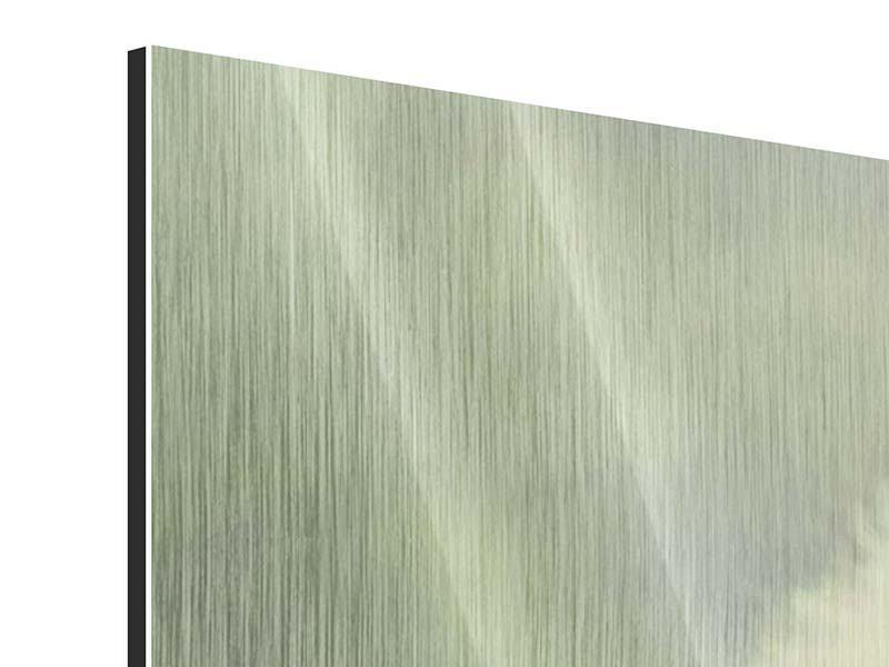 Metallic-Bild 3-teilig Die Pusteblume