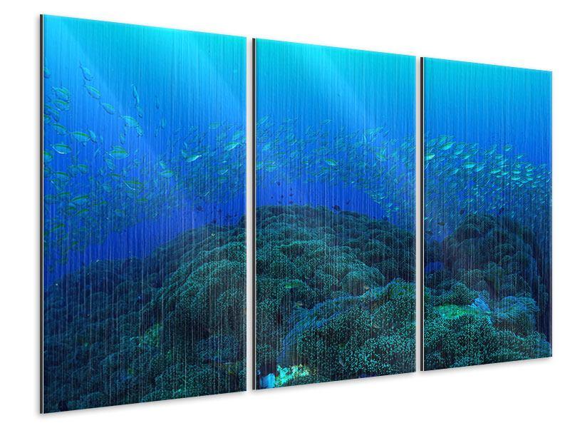 Metallic-Bild 3-teilig Fischschwärme