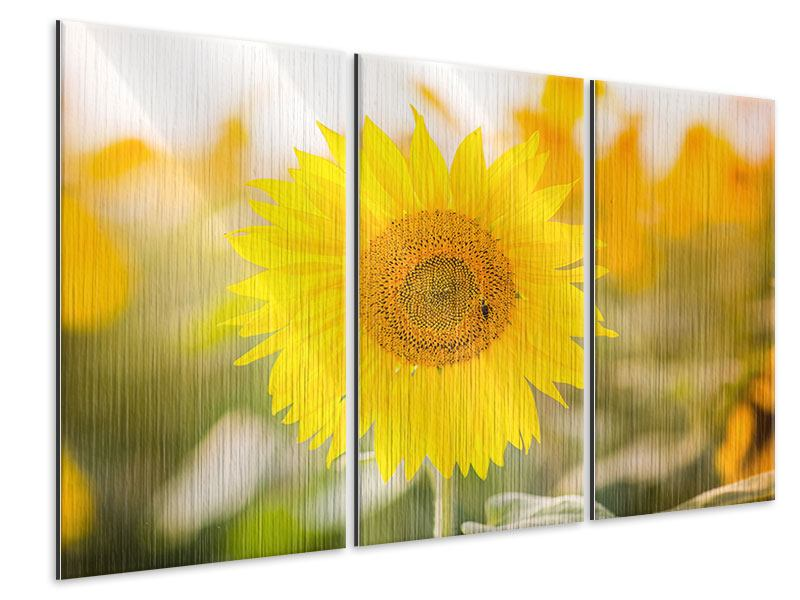 Metallic-Bild 3-teilig Sunflower