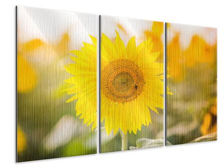 Metallic-Bild 3-teilig Sunflower