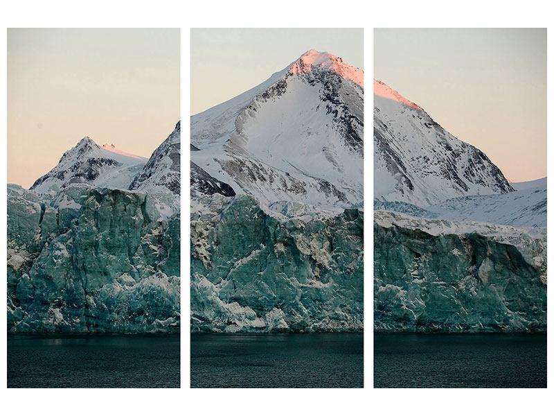 Metallic-Bild 3-teilig Die Antarktis