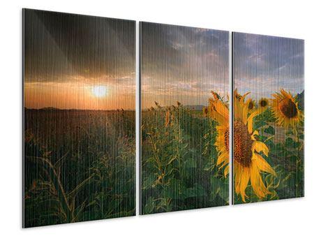 Metallic-Bild 3-teilig Sonnenblumen im Lichtspiel