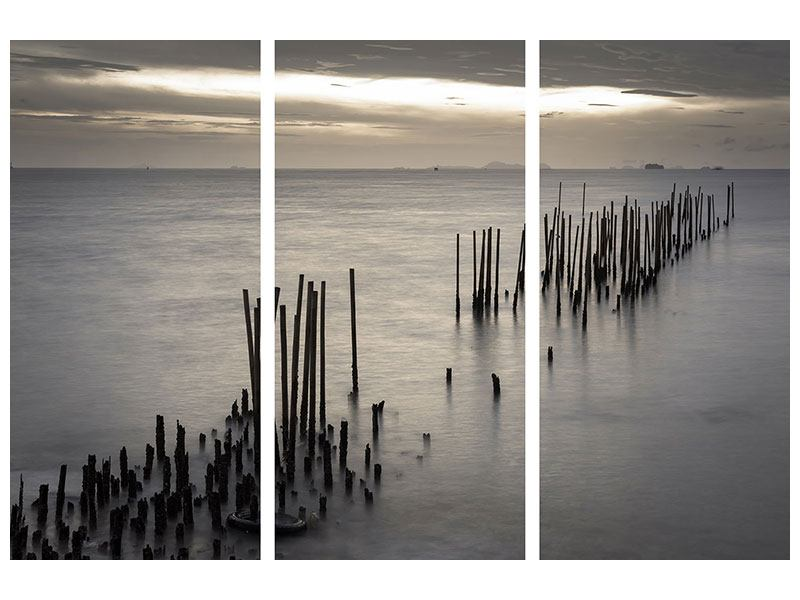 Metallic-Bild 3-teilig Das Meer und die Träne