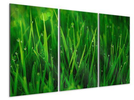 Metallic-Bild 3-teilig Gras mit Morgentau