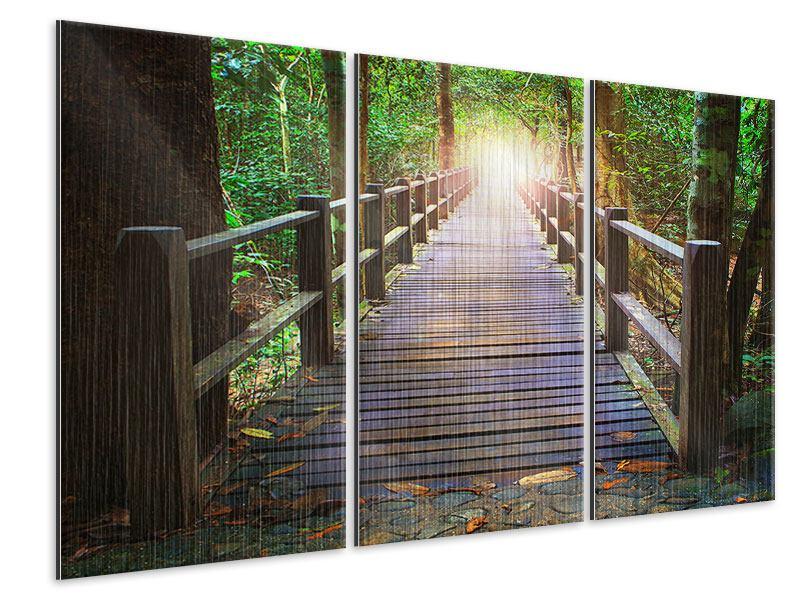 Metallic-Bild 3-teilig Die Brücke im Wald