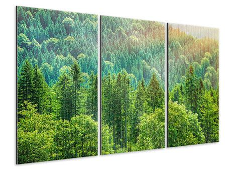 Metallic-Bild 3-teilig Der Waldhügel