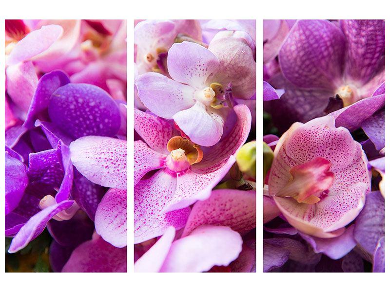 Metallic-Bild 3-teilig Im Orchideenparadies