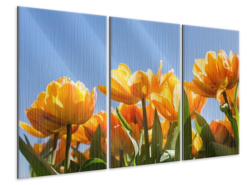 Metallic-Bild 3-teilig Märchenhafte Tulpen
