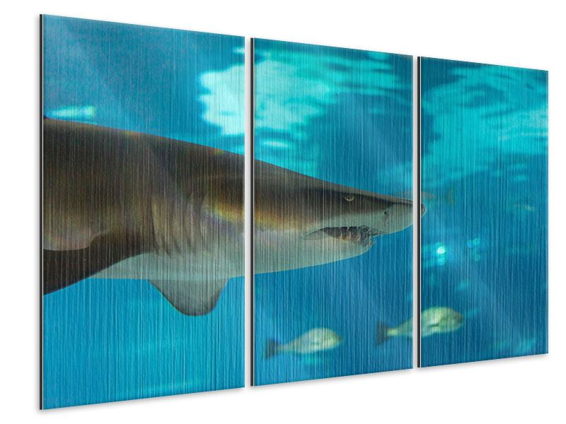 Metallic-Bild 3-teilig Der Haifisch