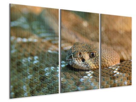 Metallic-Bild 3-teilig Viper