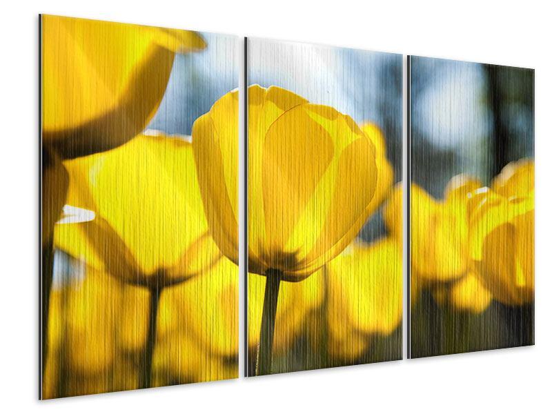Metallic-Bild 3-teilig Gelbe Tulpen in XXL