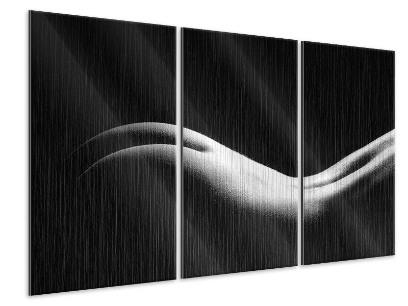Metallic-Bild 3-teilig Nude