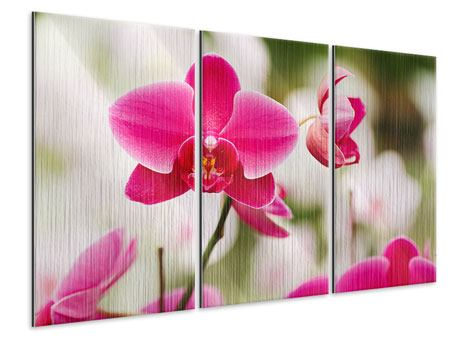 Metallic-Bild 3-teilig Perspektivische Orchideen