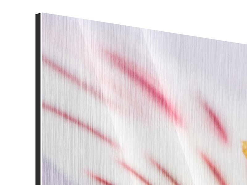 Metallic-Bild 3-teilig Close Up Die exotische Schönheit