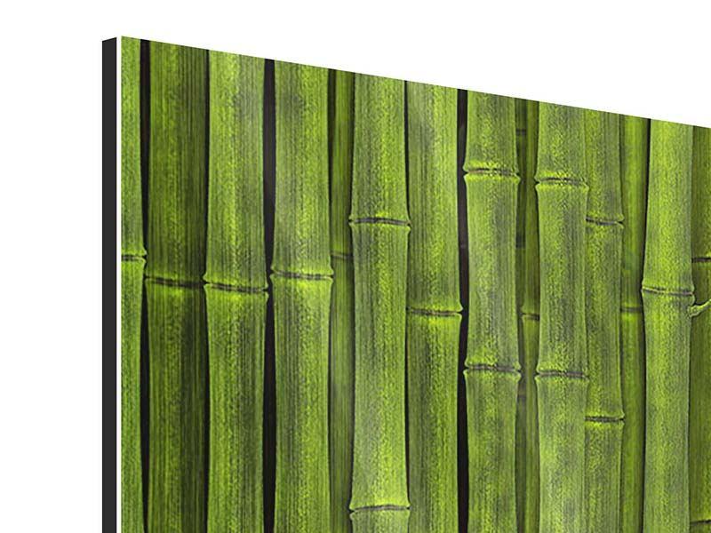 Metallic-Bild 3-teilig Wasserspiegelung Bambus