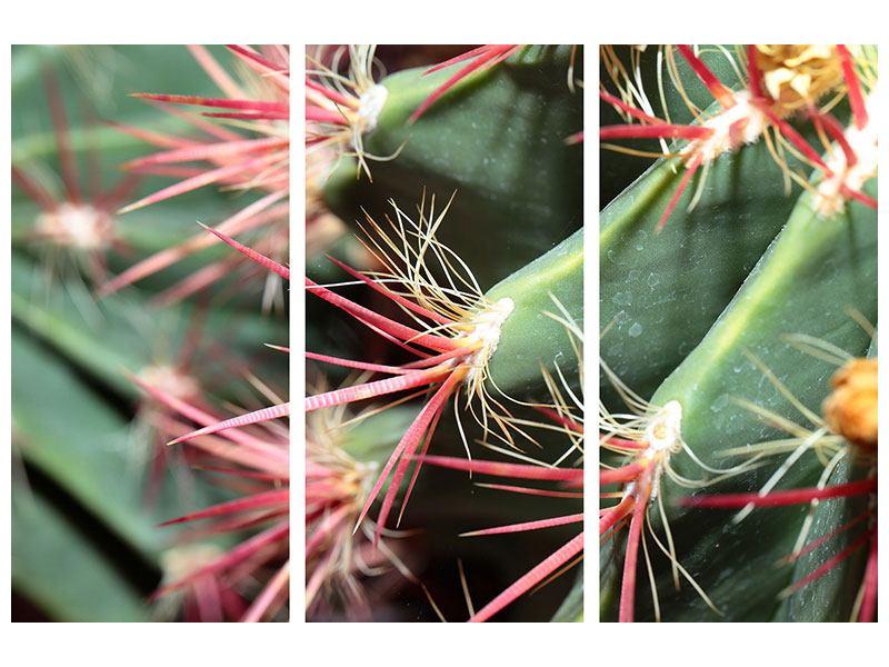 Metallic-Bild 3-teilig Die Kaktusblüte