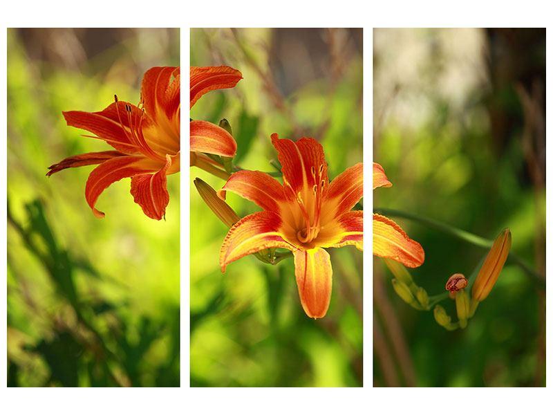 Metallic-Bild 3-teilig Lilien in der Natur
