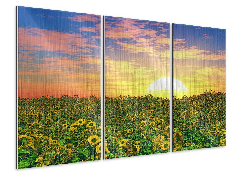 Metallic-Bild 3-teilig Blumenpanorama bei Sonnenuntergang