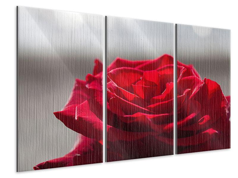 Metallic-Bild 3-teilig Rote Rosenblüte