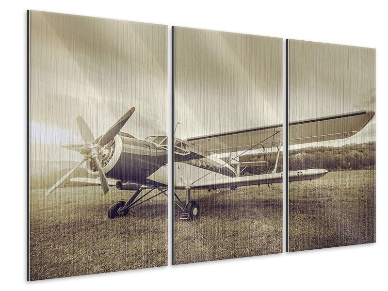 Metallic-Bild 3-teilig Nostalgisches Flugzeug im Retrostyle