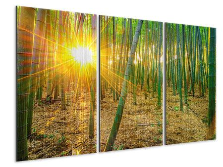 Metallic-Bild 3-teilig Bambusse