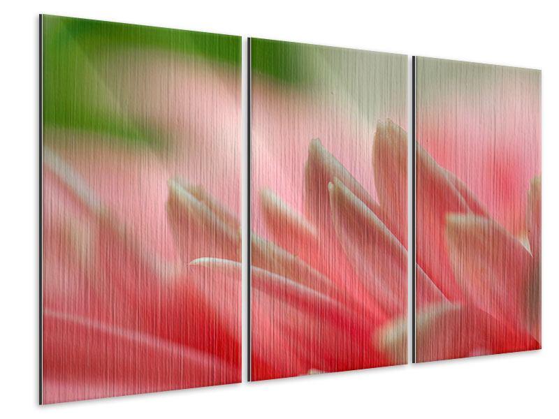 Metallic-Bild 3-teilig Close Up einer Blüte