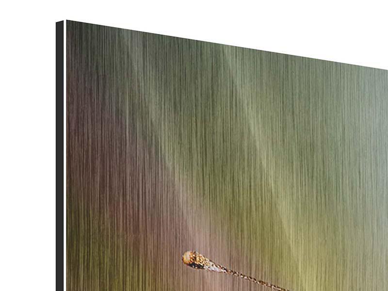 Metallic-Bild 3-teilig Der C-Falter
