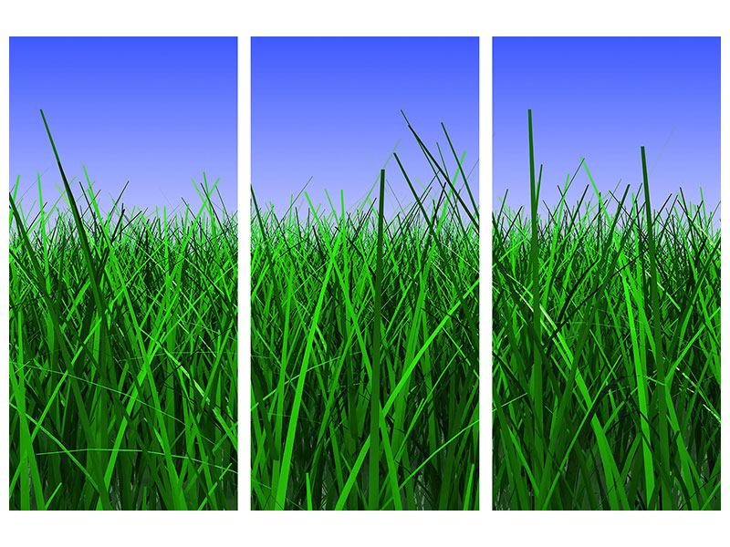 Metallic-Bild 3-teilig Im Gras