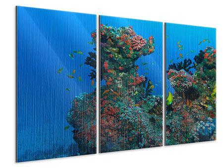 Metallic-Bild 3-teilig Die Welt der Fische