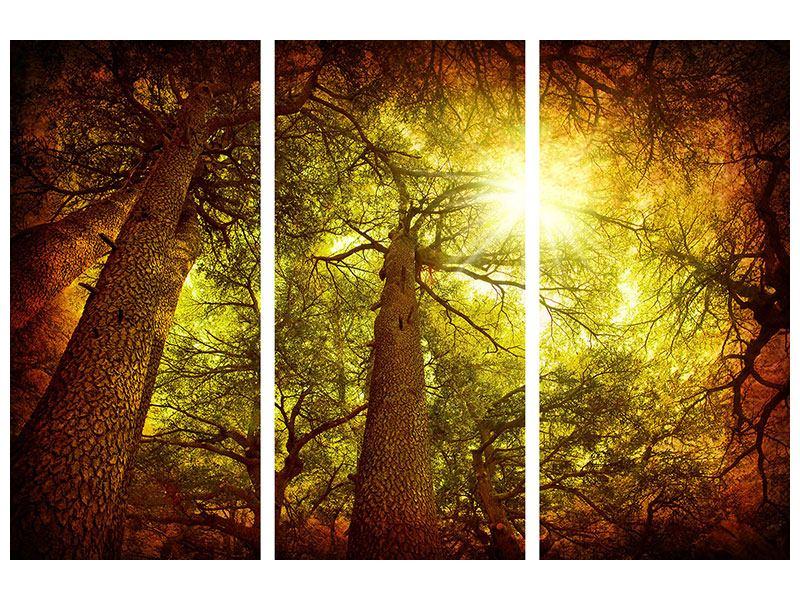 Metallic-Bild 3-teilig Cedar Baum