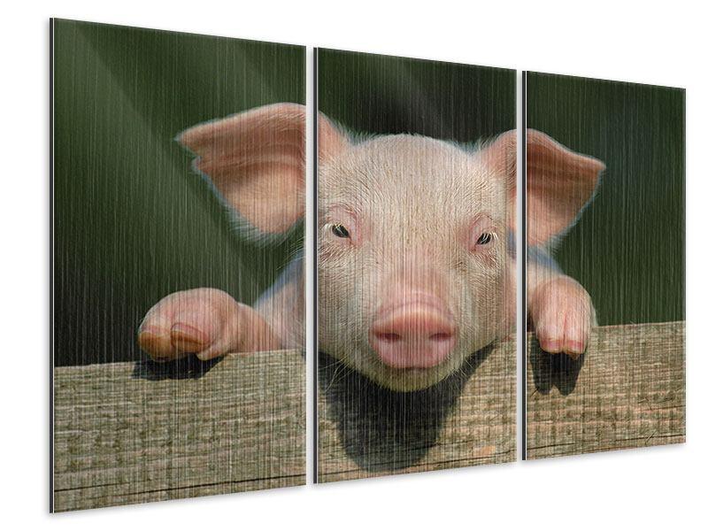 Metallic-Bild 3-teilig Schweinchen Namens Babe