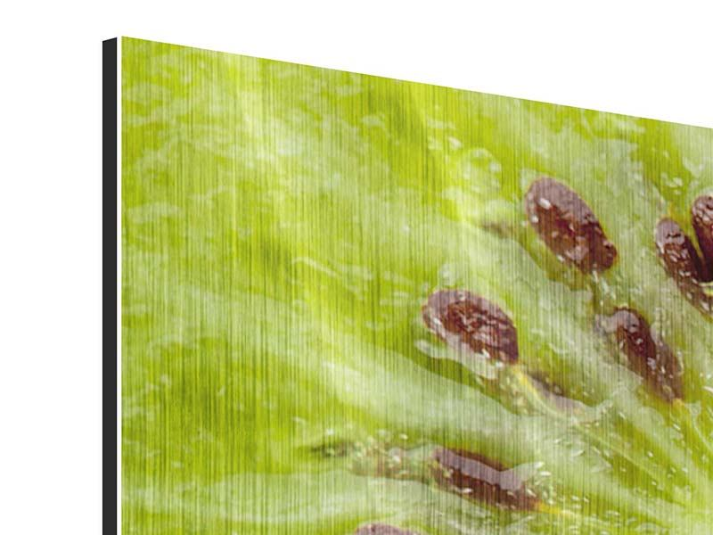 Metallic-Bild 3-teilig Close Up Kiwi