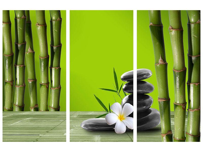 Metallic-Bild 3-teilig Der Bambus