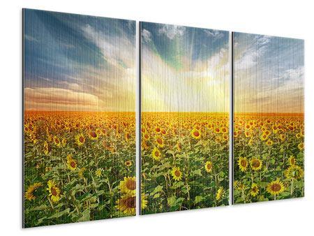 Metallic-Bild 3-teilig Ein Feld voller Sonnenblumen