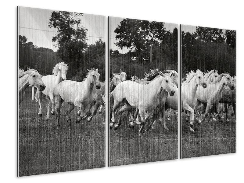 Metallic-Bild 3-teilig Die Mustang Herde
