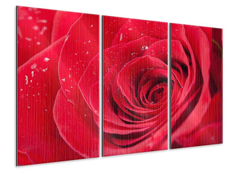 Metallic-Bild 3-teilig Rote Rose im Morgentau