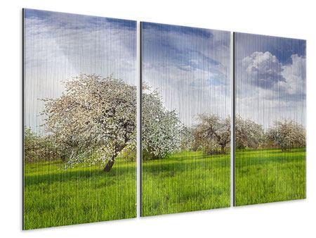 Metallic-Bild 3-teilig Apfelbaum-Garten