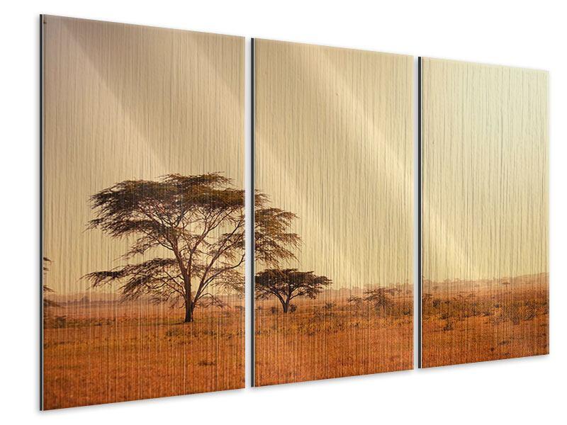 Metallic-Bild 3-teilig Weideland in Kenia