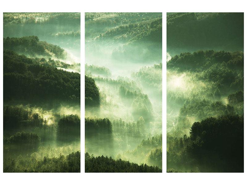 Metallic-Bild 3-teilig Über den Wäldern