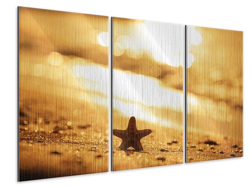 Metallic-Bild 3-teilig Der Seestern